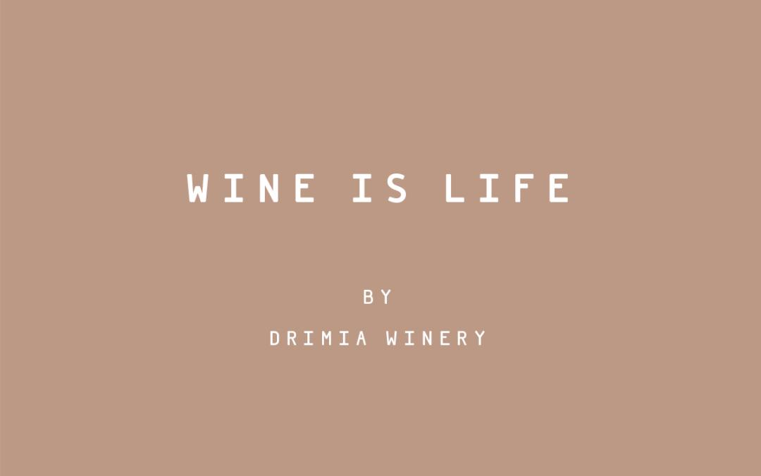 Life by Drimia